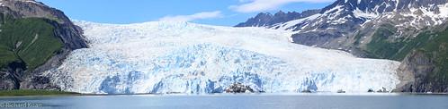 Harding Glacier/Icefield in Kenai Fjord National Park, Alaska