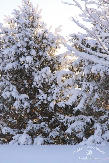 Last Snow (4)