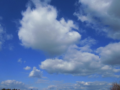 20110320 0207 273 Jakobus Bäume Weite Wolken
