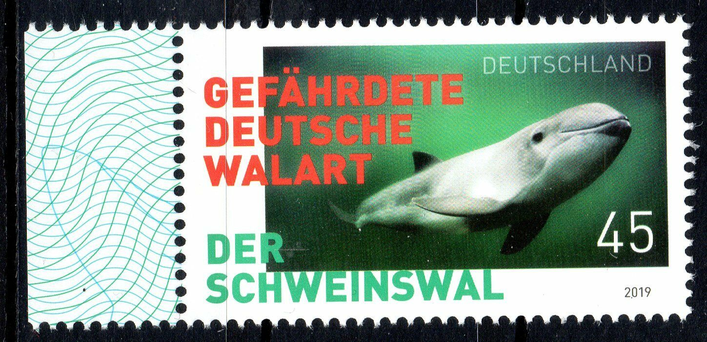 Germany - Endangered Species: Harbor Porpoises (January 2, 2019)