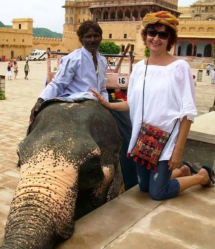 Petting an elephant outside the Amer Fort. From an exceprt from Only in India: Adventures of an International Educator