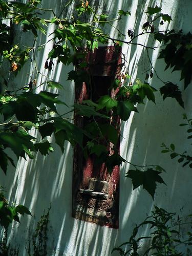 20090601 186 1111 Jakobus Fensterläden rot_K