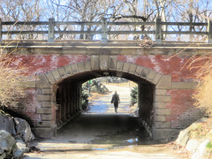 Willowdell Arch