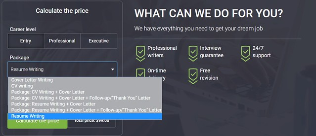 resume 101 services