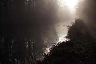 Canal in fog