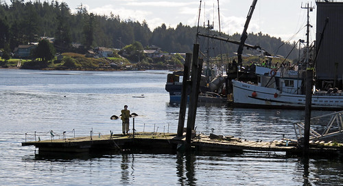 Fake fisherman on a wharf in Ucluelet on Vancouver Island, Canada