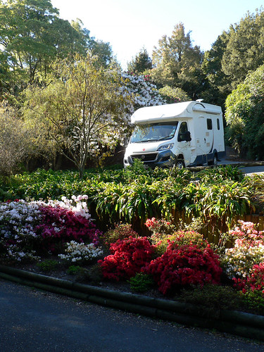 20181019 Botanical garden near Taupo