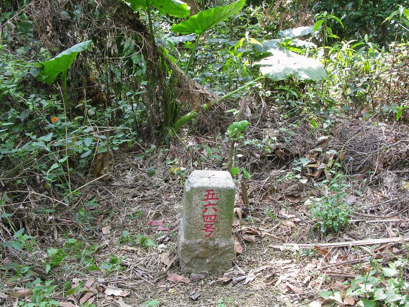 枋寮山三等三角點(# 564 Elev. 533 m) 1