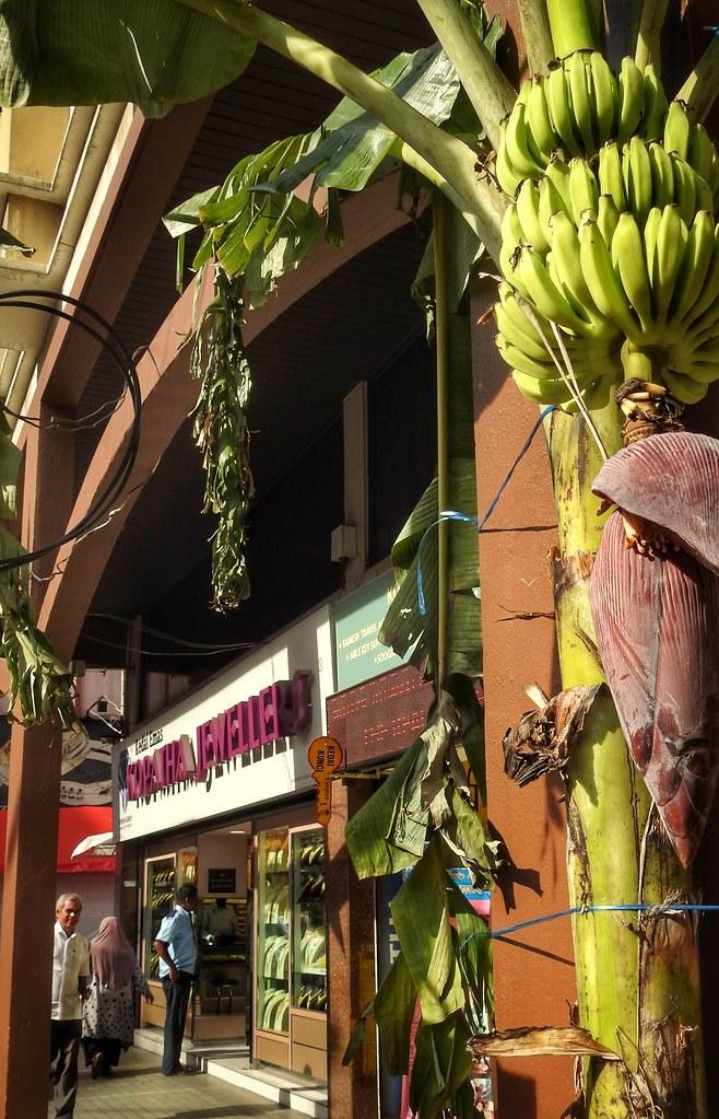 Auspicious Banana Decor