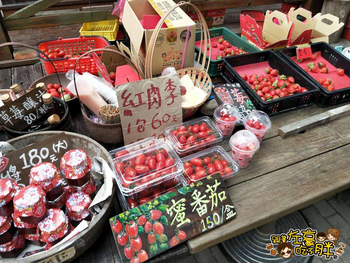 苗栗縣大湖灣潭玫瑰草莓園-36