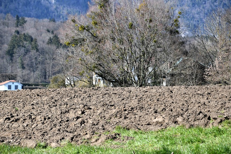 Ploughing 28.03 (1)