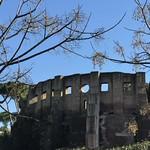Basilica costantiniana (Santa Costanza) - https://www.flickr.com/people/134205948@N02/