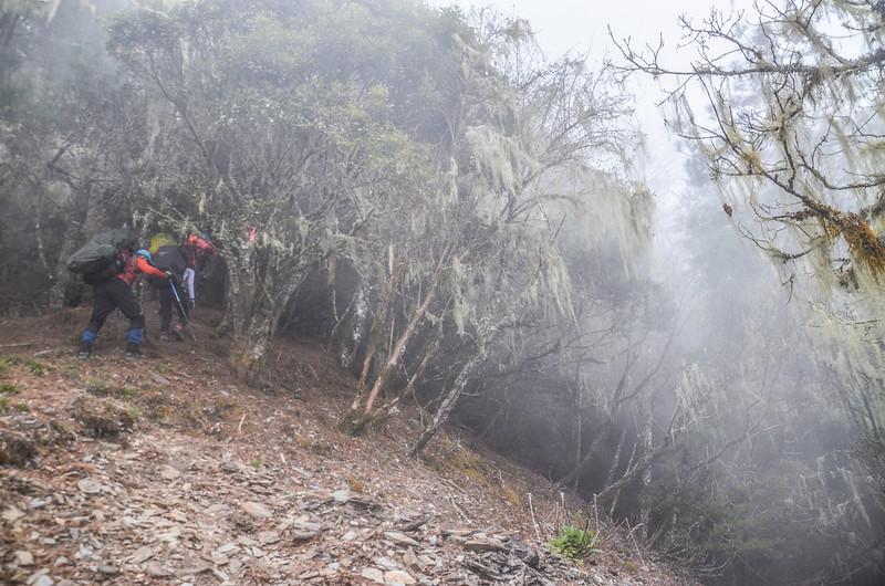 戒茂斯山碎石坡地段 (3)