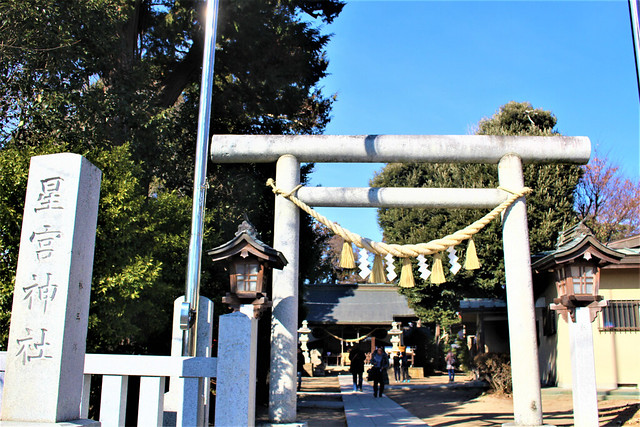 hirayanagihoshinomiyajinja019