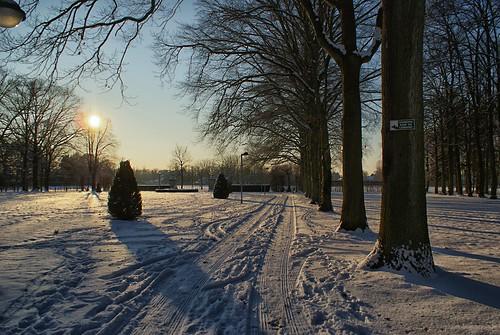 Traces in the snow / Sporen in de sneeuw