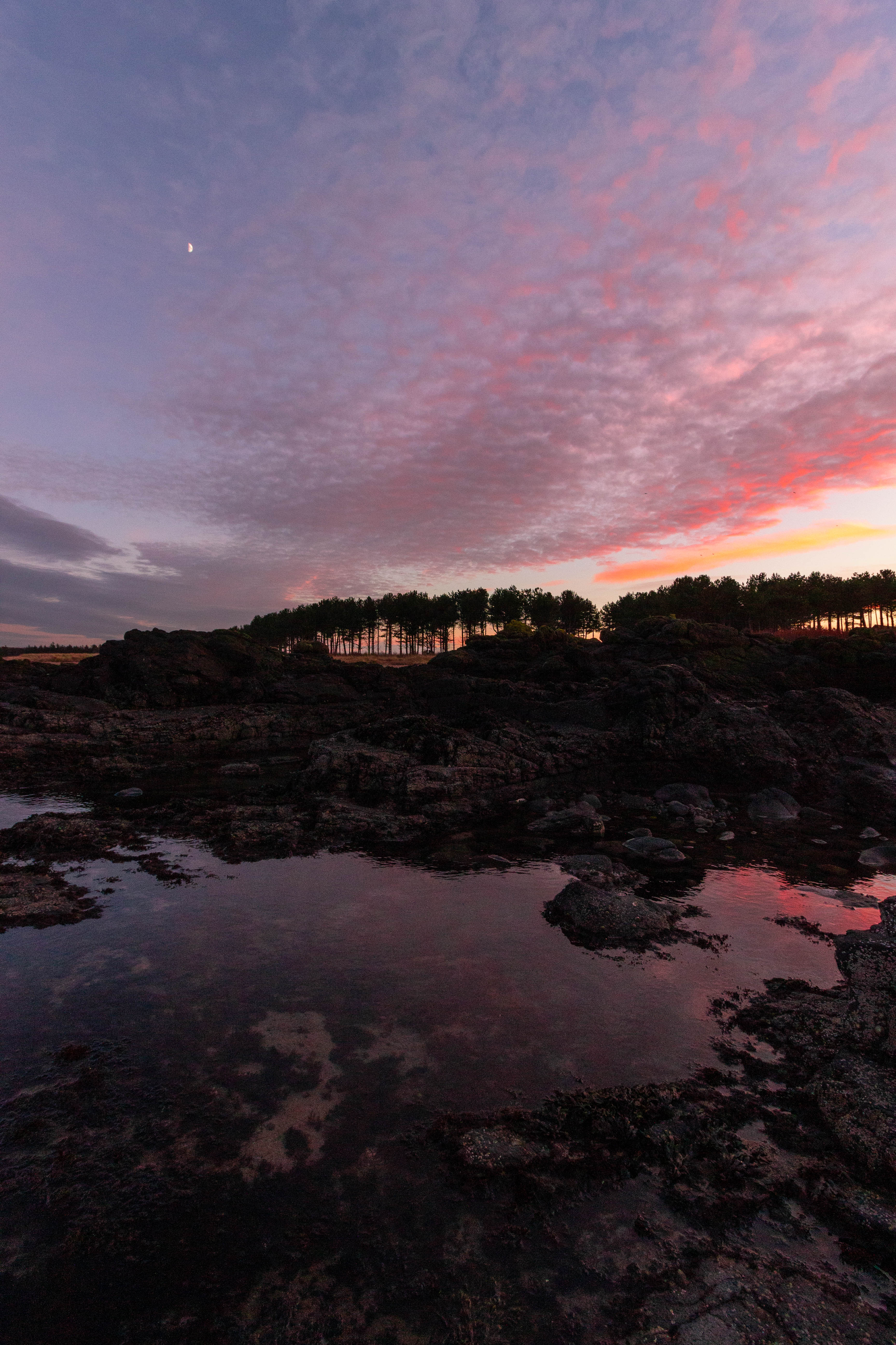 Reflection of a purple sunset in a rockpool at Yellowcraig Beach