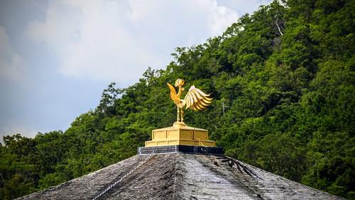 Golden Temple Cock