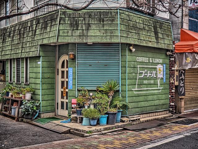 Photo:プードル By jun560