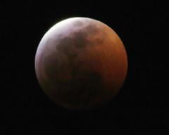 Lunar Eclipse Jan, 2019