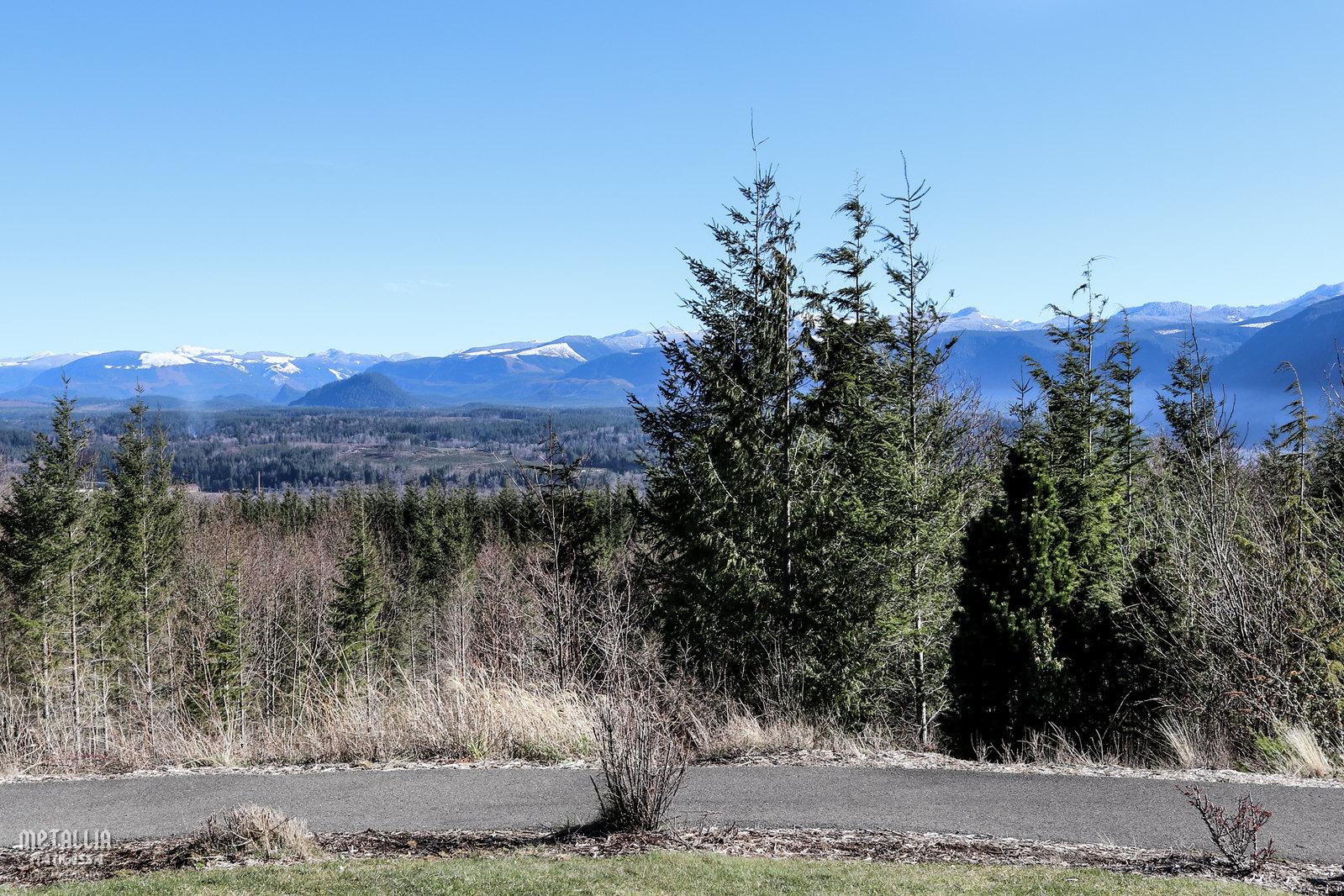 laura palmer, twin peaks, twin peaks filming locations, twin peaks picnic scene, twin peaksin kuvauspaikat