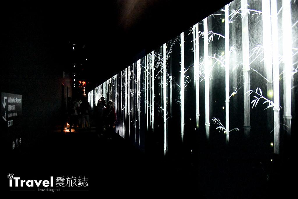 东京艺术展览 teamLab Borderless (92)