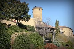 Vue sur la tour-donjon # Oingt # Rhône (69) . - Photo of Châtillon