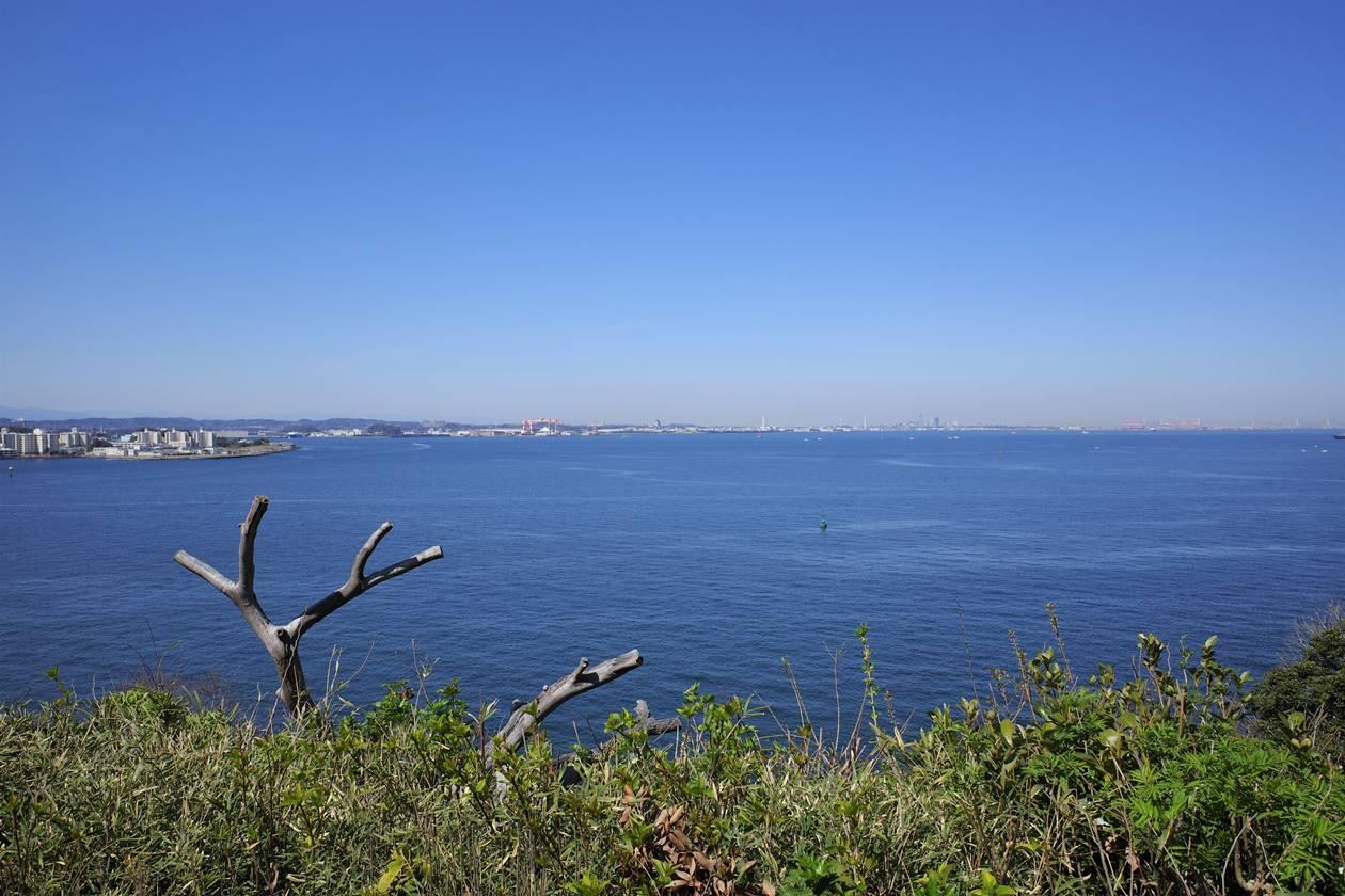 猿島から眺める海とみなとみらい方面の街