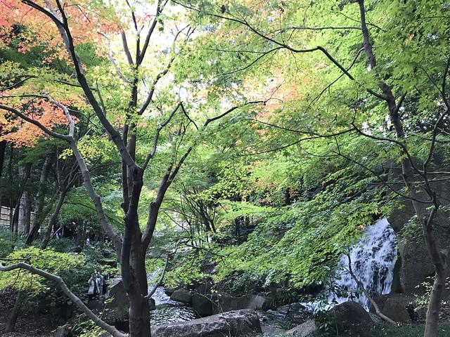 Photo:徳川園 Tokugawa Garden By Kanesue
