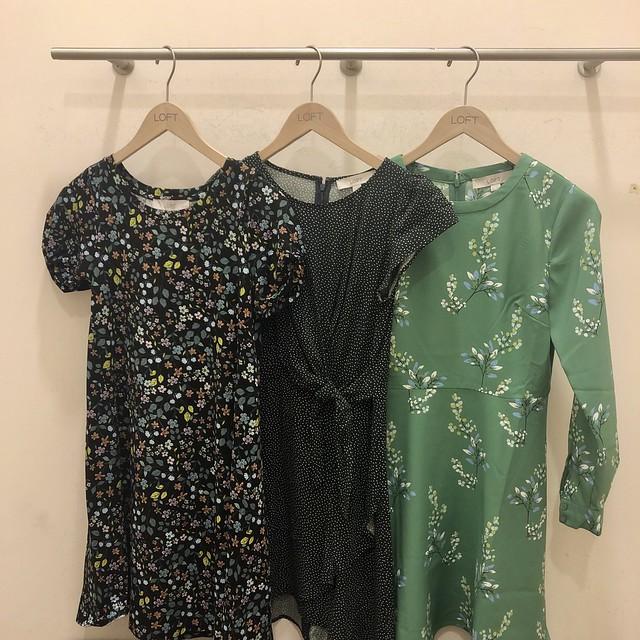 LOFT Spring Dresses