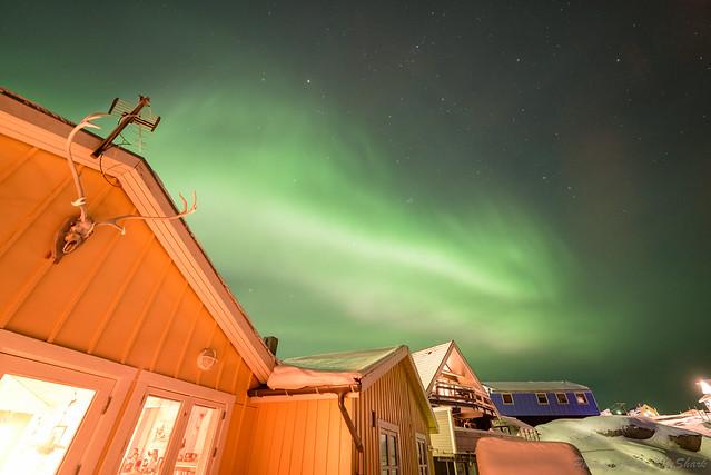 20181230-ilulissat-DSC_0165