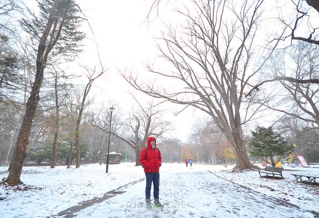 hokkaido itinerary Maruyama Park Sapporo