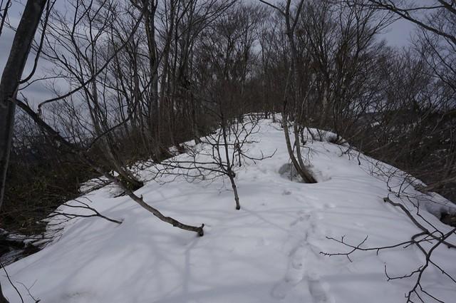 Attack to the Mt. NISHIYAMA