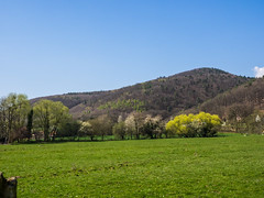 Oberbronn - Photo of Zinswiller