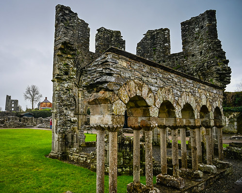Mellifont Abbey Ruins - County Louth Ireland