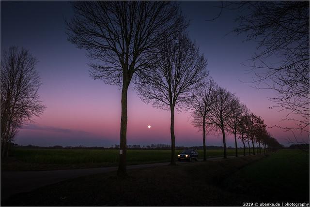 _moonlight