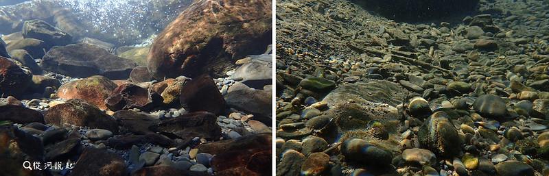 沒有壩體的自然溪底,大小石頭的排列多元,還保有許多大小孔隙(左圖),而往下50公尺受壩上淤積影響單調許多,大小石礫及土砂堆在一起,大孔隙都被塞滿了。(右圖)