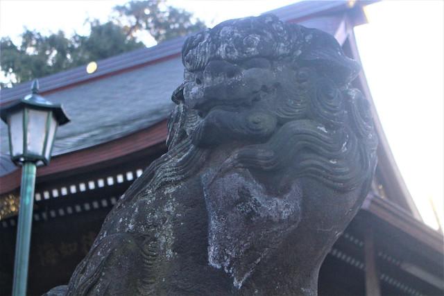 takedasuga-gosyuin011