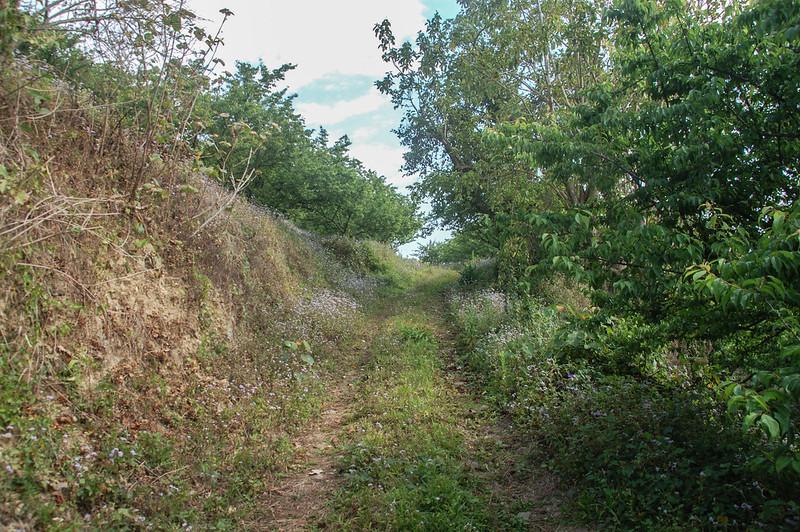 梅園間泥土產業道路