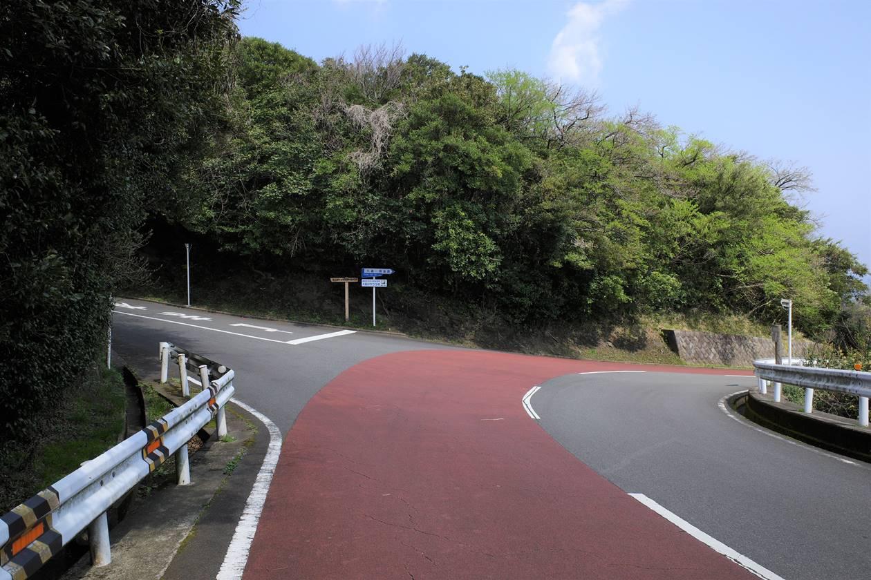 伊豆大島 桜株へ
