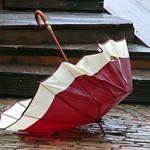 Wrecked umbrella