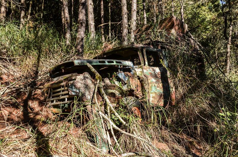 200林道廢棄卡車 (7)