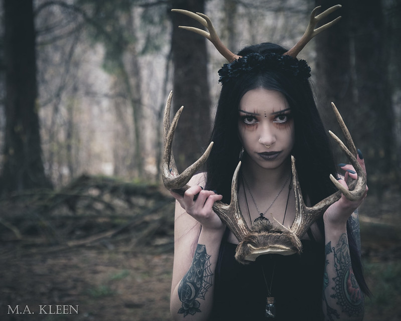 She Upon the Black Wolf (Sara Lynn)