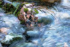 Pepperwood-Seasonal-Creek-1