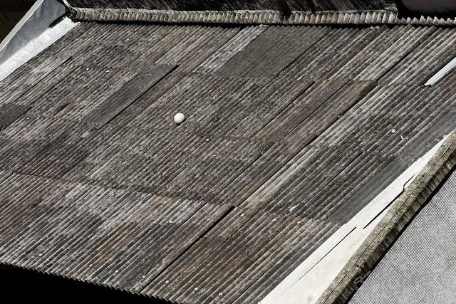 Mang Ens 181221 002 Bulhões bola no telhado garagem