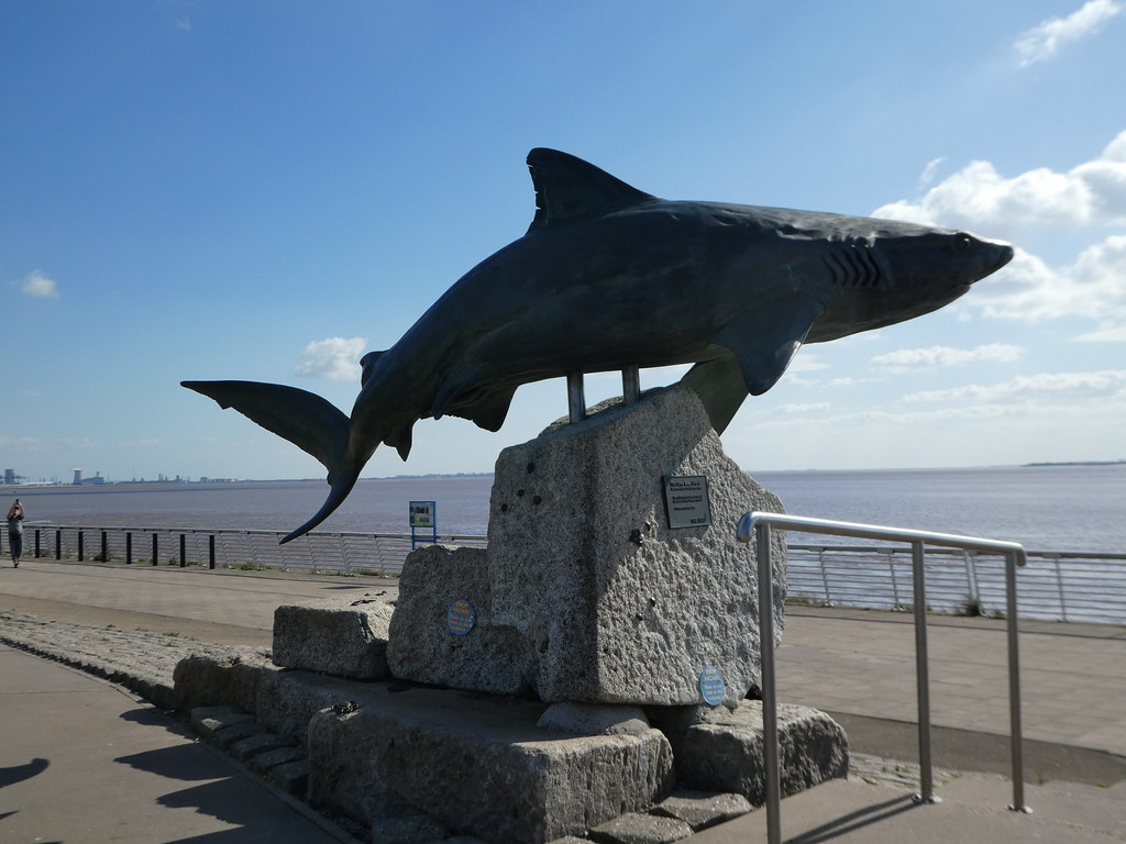Shark sculpture overlooking the Humber Estuary, Hull