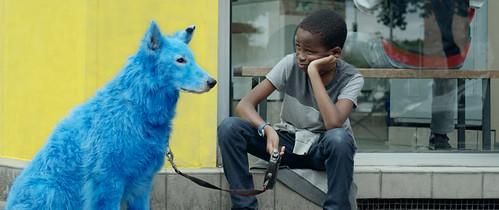 『青い犬』