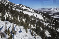 Aerial Tram at Jackson Hole Resort