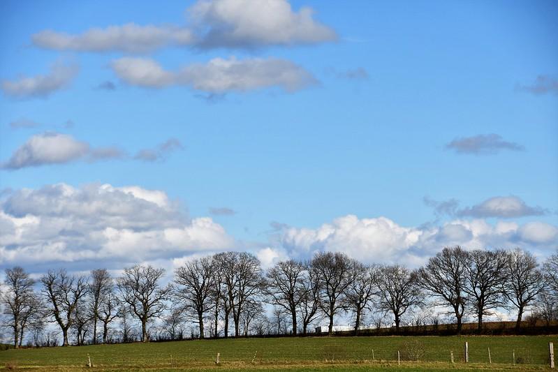 Clouds 07.03 (6)