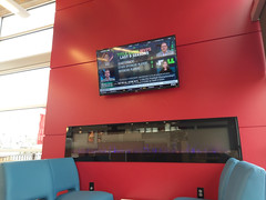 Sports on the big screen, though they're all 'losing bets'
