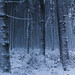 Cold gets colder by Petr Sýkora